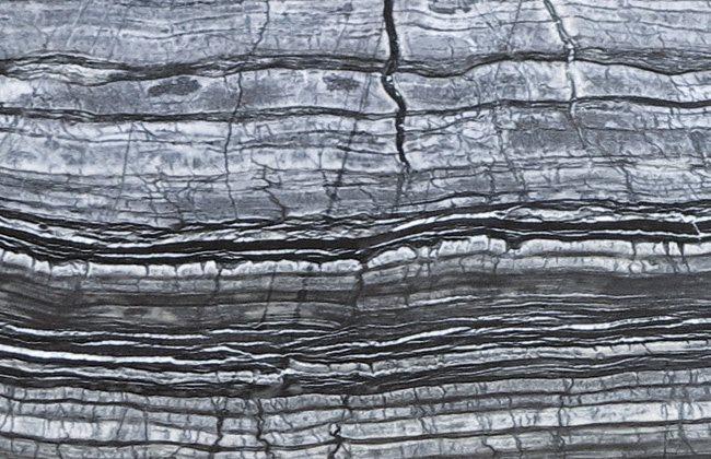 longhi_materiali_marmo_silver_wave_small(0)